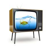 Stylish retro TV. Stock Photos