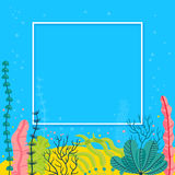 Stylish sea bottom background with seaweeds and place for your text. Bright vector marine live banner.  Royalty Free Stock Images