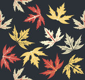 Stylish seamless pattern with autumn leaves Stock Photography