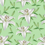 Stylish seamless pattern with 3d flower lily Stock Images