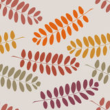 Stylish seamless texture with tree branches on a gray background Stock Photography