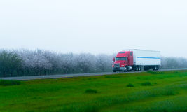 Stylish semi truck and trailer on highway with blooming trees. Stylish red semi truck with a trailer transporting long haul loads on a flat straight highway Stock Photo