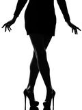 Stylish silhouette Stock Images