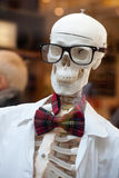 Stylish skeleton. In jacket and bow tie with skull in glasses royalty free stock photography