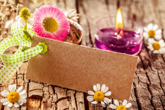 Stylish spring flower card Royalty Free Stock Images