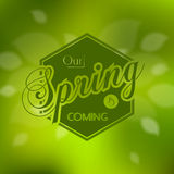 Stylish Spring seasonal card design Stock Photos