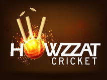 Stylish text for Cricket Sports concept. Stylish text Howzzat with fiery Ball hit the Wicket Stumps on brown background for Cricket Sports concept Royalty Free Stock Images