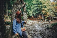 Stylish traveler girl in hat exploring woods. hipster woman trav. Elling in the forest, sitting on tree at river. space for text. wanderlust and travel concept Royalty Free Stock Photography