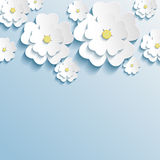 Stylish trendy wallpaper with 3d flowers sakura Stock Photo