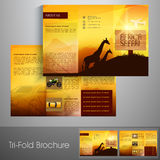 Stylish trifold brochure or flyer design for tour and travels. Stock Photography