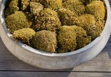 Stylish urn stone vase with moss Stock Image