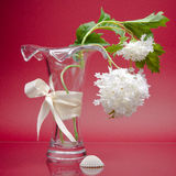 Stylish vase with ribbon and flower on pink Stock Photography