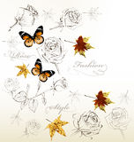Stylish vector background with roses, butterflies and leafs Stock Image