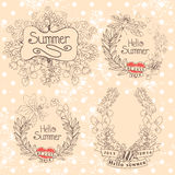 Stylish Vintage floral label with butterflies,bees.Hellow summer Stock Image