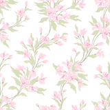 Stylish vintage floral seamless pattern. EPS10 vector illustration. Contains transparency Royalty Free Stock Photos