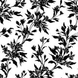 Stylish vintage floral seamless pattern. EPS10 vector illustration. Contains transparency Royalty Free Stock Photography