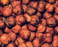 Stylish vintage nuts texture royalty free stock images