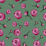 Seamless pattern with red roses on a green background vector illustration