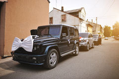 Stylish wedding cortege of cars with a bow and hat Stock Images