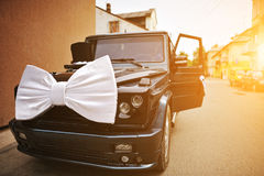 Stylish wedding cortege of cars with a bow and hat Stock Photo