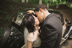 Stylish wedding couple, bride, groom kissing and hugging near retro car in autumn Stock Image