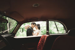 Stylish wedding couple, bride, groom kissing and hugging near retro car in autumn Stock Photography