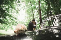 Stylish wedding couple, bride, groom kissing and hugging near retro car in autumn Royalty Free Stock Image