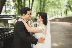 Stylish wedding couple, bride, groom kissing and hugging near retro car in autumn Stock Photos