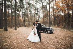 Stylish wedding couple, bride, groom kissing and hugging near retro car in autumn Royalty Free Stock Images