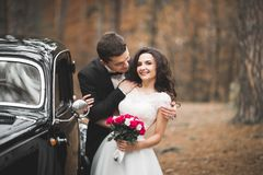 Stylish wedding couple, bride, groom kissing and hugging near retro car in autumn Stock Images