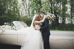 Stylish wedding couple, bride, groom kissing and hugging on retro car Royalty Free Stock Photography