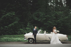 Stylish wedding couple, bride, groom kissing and hugging on retro car Stock Image
