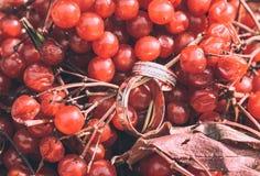 Stylish wedding rings Stock Images