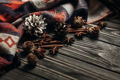 Stylish winter or autumn wallpaper. anise cinnamon and pine cone Stock Image