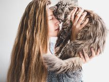 Stylish woman and fluffy kitten royalty free stock images