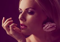Stylish woman Stock Images