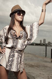 Stylish woman posing Royalty Free Stock Photo