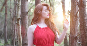 Stylish Woman in red Dress Stock Photo