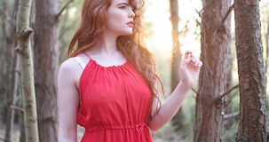 Stylish Woman in red Dress Royalty Free Stock Photos