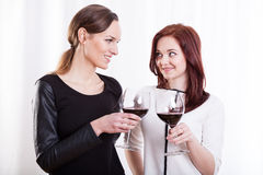 Stylish women raising their glasses Royalty Free Stock Photography