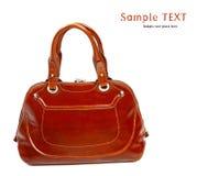 Stylish women's leather bag Stock Photography