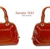 Stylish women's leather bag Stock Images