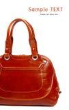 Stylish women's leather bag Stock Images