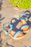 Stylish women's shoes, sandals in nature Royalty Free Stock Images