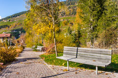 Stylish Wooden Bench on a Cobbled Path Royalty Free Stock Images
