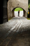 Stylish young fashion groom and bride on the background old vien Stock Image