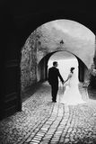 Stylish young fashion groom and bride on the background old vien Stock Photos