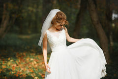 Stylish young gorgeous bride on the background  spring sunny gr Royalty Free Stock Images