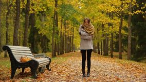 Stylish young woman feels cold and call by mobile near a bench in autumn park. Elegant girl stands up near a wooden bench,calls her friend,  in a picturesque stock footage