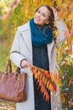 Stylish young woman picking autumn leaves Stock Photos